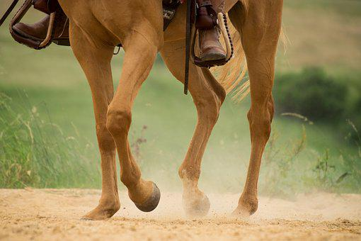 Human, Horse, Trot, Legs, Four, Hoof, Sand, Western