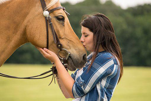 Horse, Trust, Love, Kiss, Friendship, Animal, Human