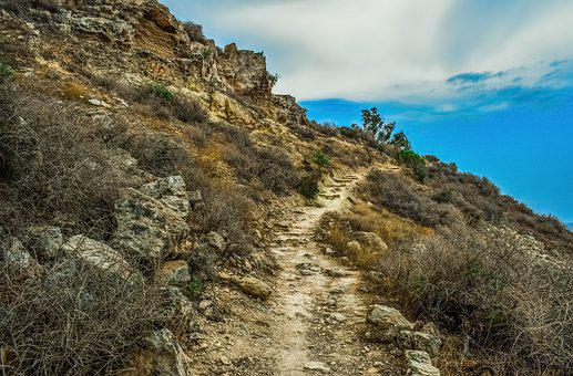 Path, Hill, Trekking, Landscape, Nature, Trail, Hiking