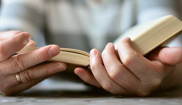 Hands, Book, Read, Open Book, Bible, Literature