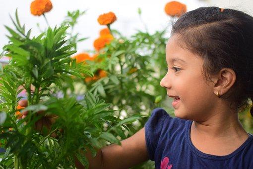 Flower, Child, Kid, Girl, Little, Happy, Childhood
