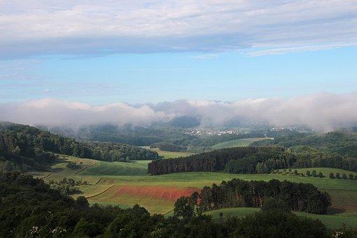 Landscape, Fog, Forest, Haze, Nature, Vision