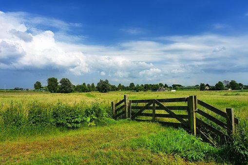 Gate, Field, Meadow, Dutch Landscape, Holland