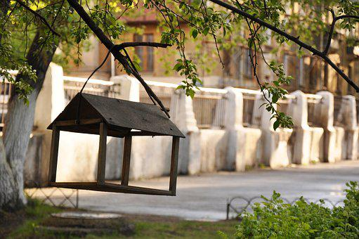 Feeder, Fence, Tree, House For Birds, Vintage, Old