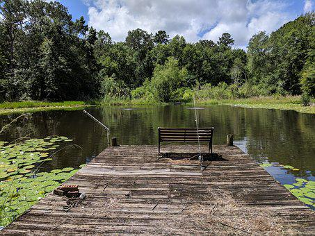 Pond, Dock, Nature, Outdoor, Landscape, Relaxation