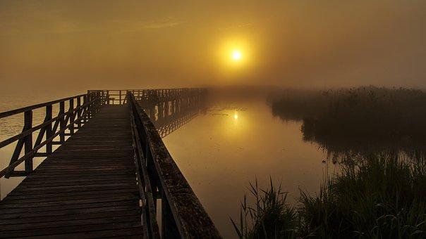 Spring Lake, Web, Sunrise, Fog, Morning, Gloomy, Cold