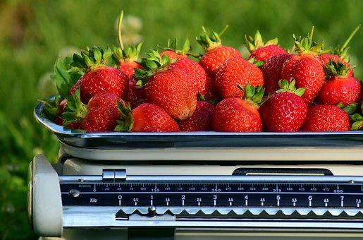 Horizontal, Strawberries, Weigh, Weight, Frisch