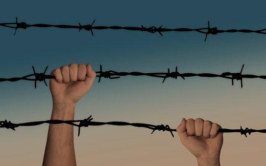 Hands, Barbed Wire, Caught, War, A Prisoner Of War