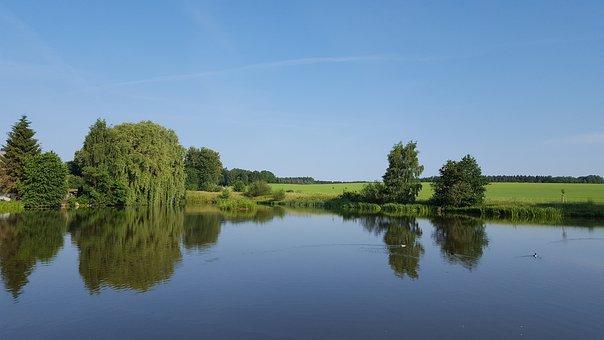 Waters, Reflection, Lake, Tree, Landscape, Nature, Blue
