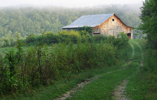Barn, Green, Outdoor, Country, Old