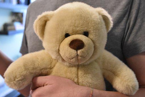 Teddy, Teddy Bear, Toy, Plush, Bear, Cute, Brown, Soft