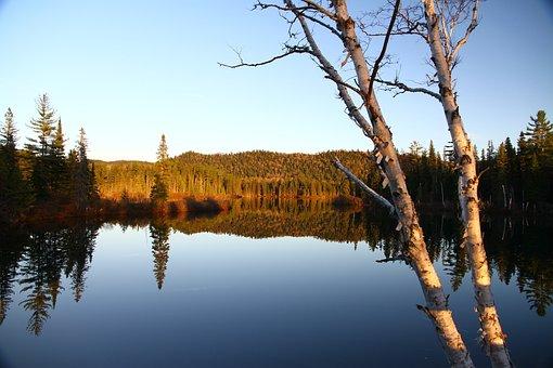 Lake, Calm, Landscape, Tranquility, Nature