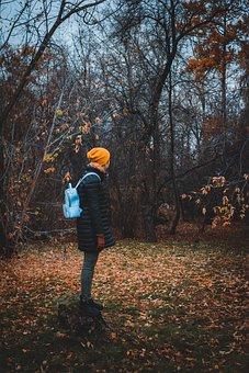 Forest, Park, Gloomy, Leaves, Trees, Nature, Tree