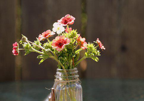 A Small Bunch, Garden Flowers, Vase, The Delicacy