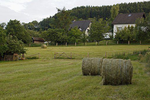 Germany, Sauerland, Landscape, Agriculture, Hay