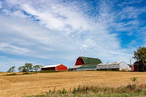 Farm, Rural, Barn, Agriculture, Countryside, Landscape