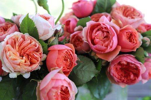 Rose, Bouquet, Flower Arrangement, Rosa, Floral