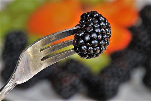 Fork, Fruit, Bio, Season, Summer, Lean, Orange