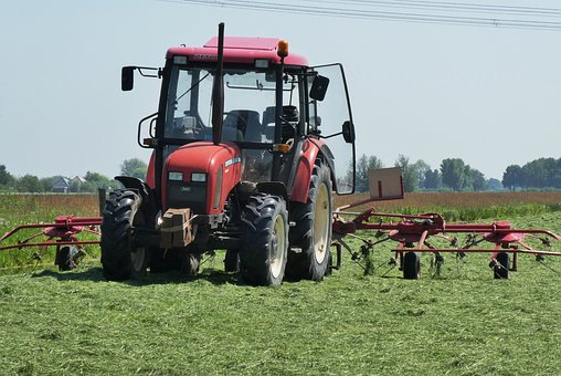 Tractor, Grass, Agriculture, Agricultural Vehicle, Hay