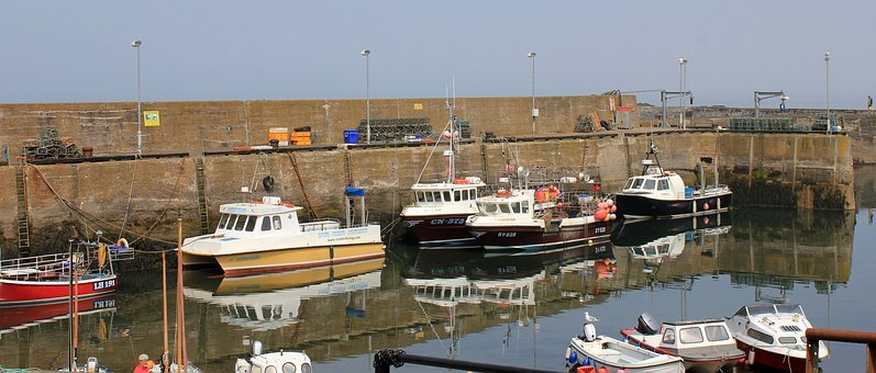 Harbour, St Abbs, Scotland East Coast, Bay