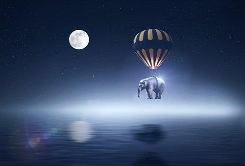 Ramadhan, Ramadan, Elephant, Nightsky, Stars, Milkyway