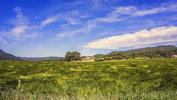 Landscapes, Nature, Natural Landscape, Sky, Field