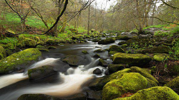 Hardcastle Crags, Yorkshire, River, Stream