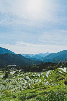 Maruyama, Senmaida, Japan, Rice, Kumano, Mie, Nature