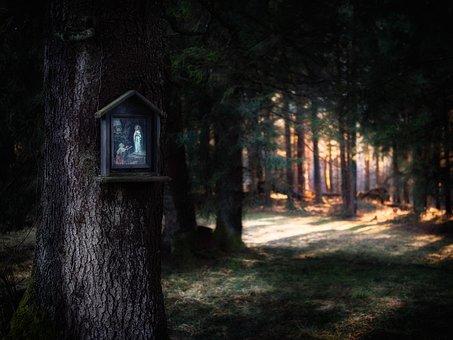 Religion, Maria, Portrait, Image, Sunlight, Forest