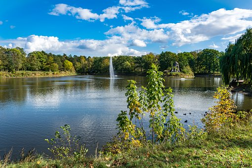 Lake, Park, Magdeburg, Water, Pond, Trees, Plant, Green
