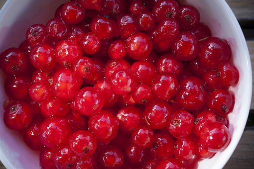 Currants, Fruits, Red, Ripe, Berries, Fruit, Food
