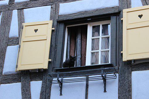 Window, Black Cat, Fachwerkhaus, Shutters