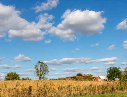 Farm, Rural, Countryside, Landscape, Country, Blue Sky