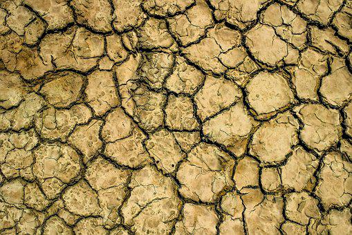 Drought, Aridity, Aridness, Dry, Crack, Texture