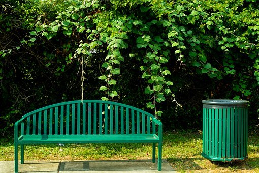 Bench, Trash Bin, Metal, Green, Park, Shrub, Vine