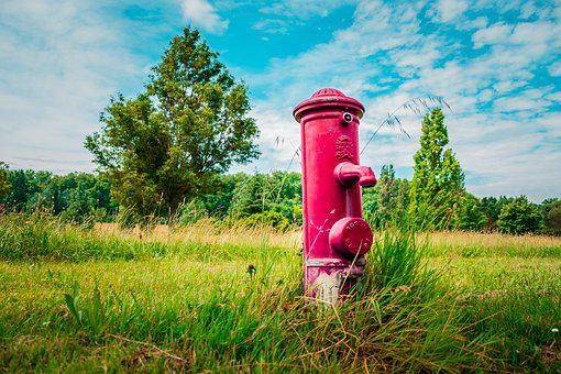 Hydrant, Pump, Water, Drink, Red, Gras, Park, Tree, Sky