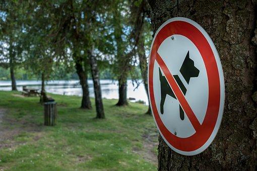 Sign, Dog, Symbol, Animal, Icon, Pet, Park, Picnic