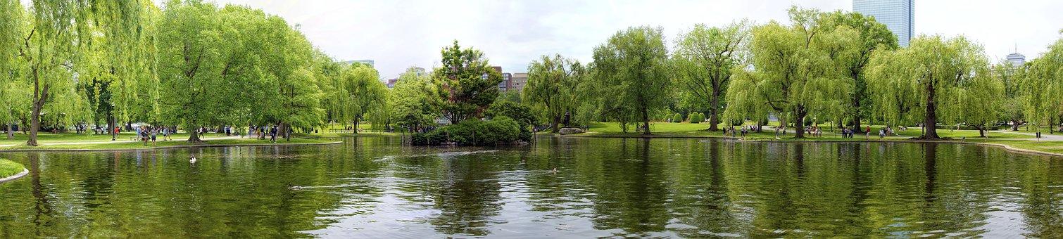 Boston Commons, Park, Boston, City, Urban, Pond