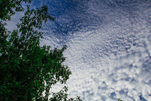 Clouds, Sky, Blue Sky, Evening Sky, Cloud, Nature, Day