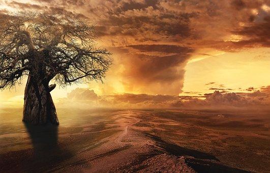 Fantasy, Tree, Landscape, Clouds, Desert Landscape