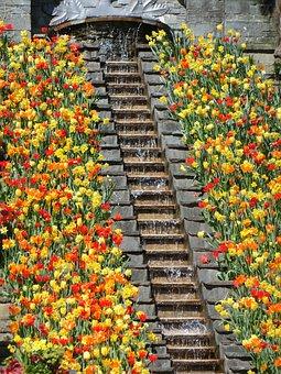 Flowers Staircase, Mainau Island, Tulips