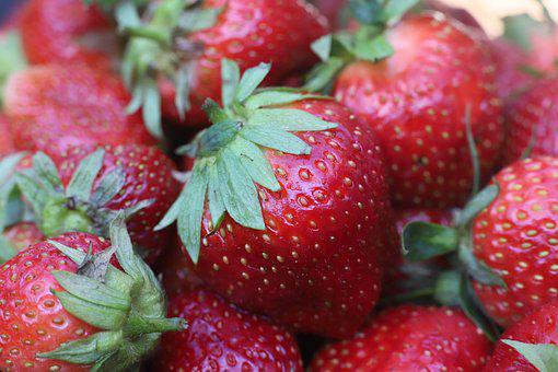 Strawberry, Strawberries, Fruit, Fruits, Nature, Plant