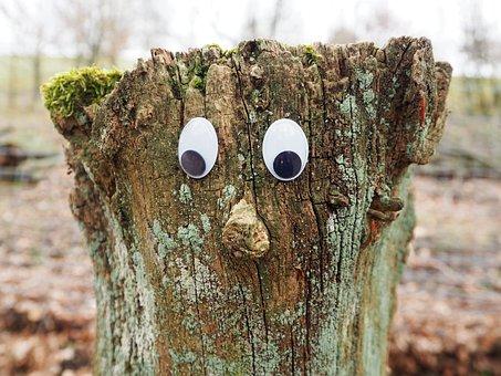 Tree, Tree Stump, Face, Sawed Off, Figure, Rest, Nature