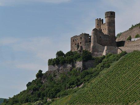 Castle, Ehrenfels, Rhine, Vineyard, Bingen