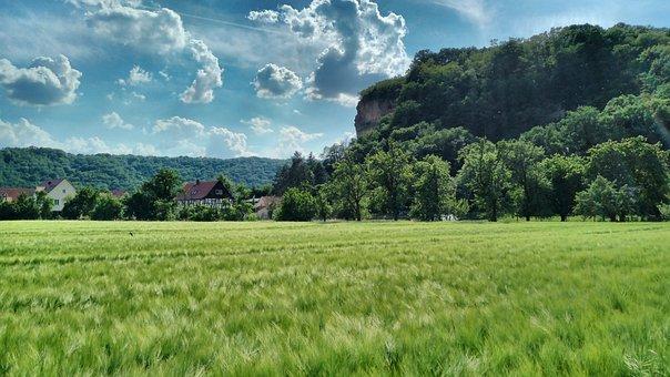 Sörnewitz, Boselfelsen, Cornfield, Summer, Clouds