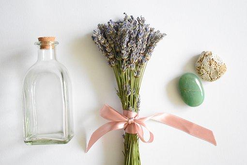 Summer, Lavender, Flower, Plant, Floral, Purple, Violet