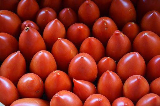 Tomatoes, Red, Vegetables, Tomato, Food, Garden