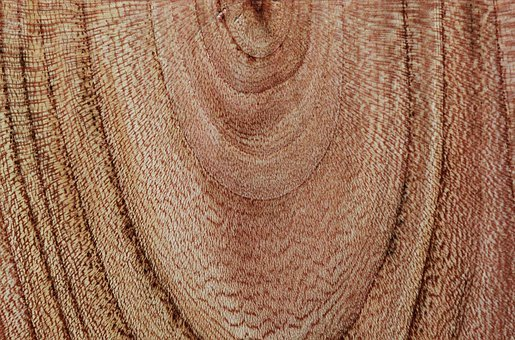 Wood, Wood Grain, Wooden Structure, Annual Rings, Grain
