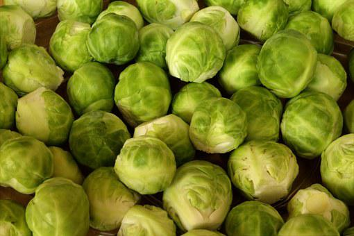 Brussels Sprouts, Vegetables, Rosenkoehlchen, Edible