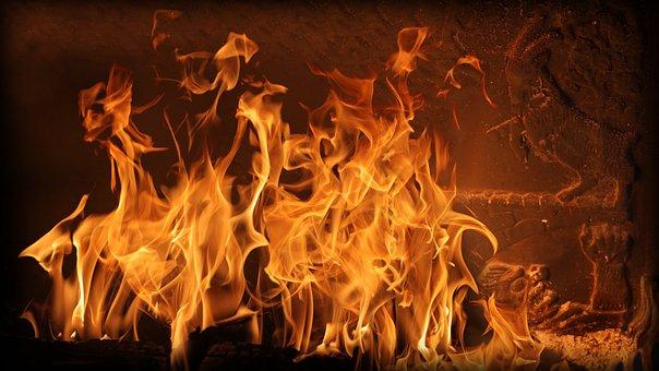 Fire, Goats, Bruse, Fireplace, Flames, Fight, Heat, Bro